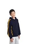 Sport-Tek® Youth Sleeve Stripe Pullover Hooded Sweatshir